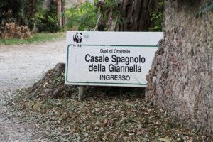 Casale-Giannella0