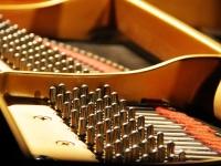 Particolari del pianoforte